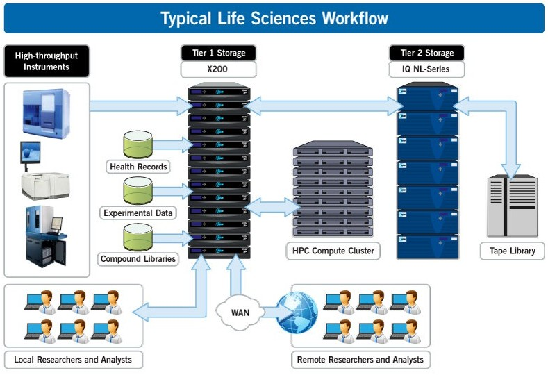 typical-life-sciences-workflow